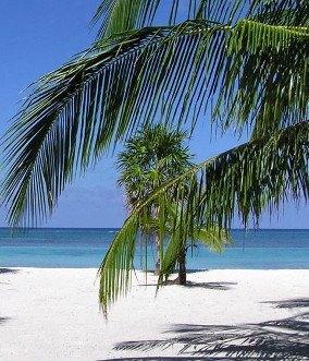 From Costa del Sol